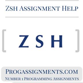 Zsh Assignment Help